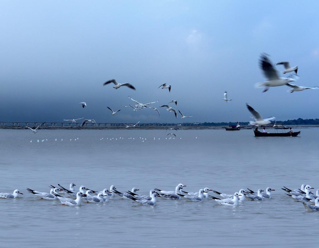 Ganga Sangam