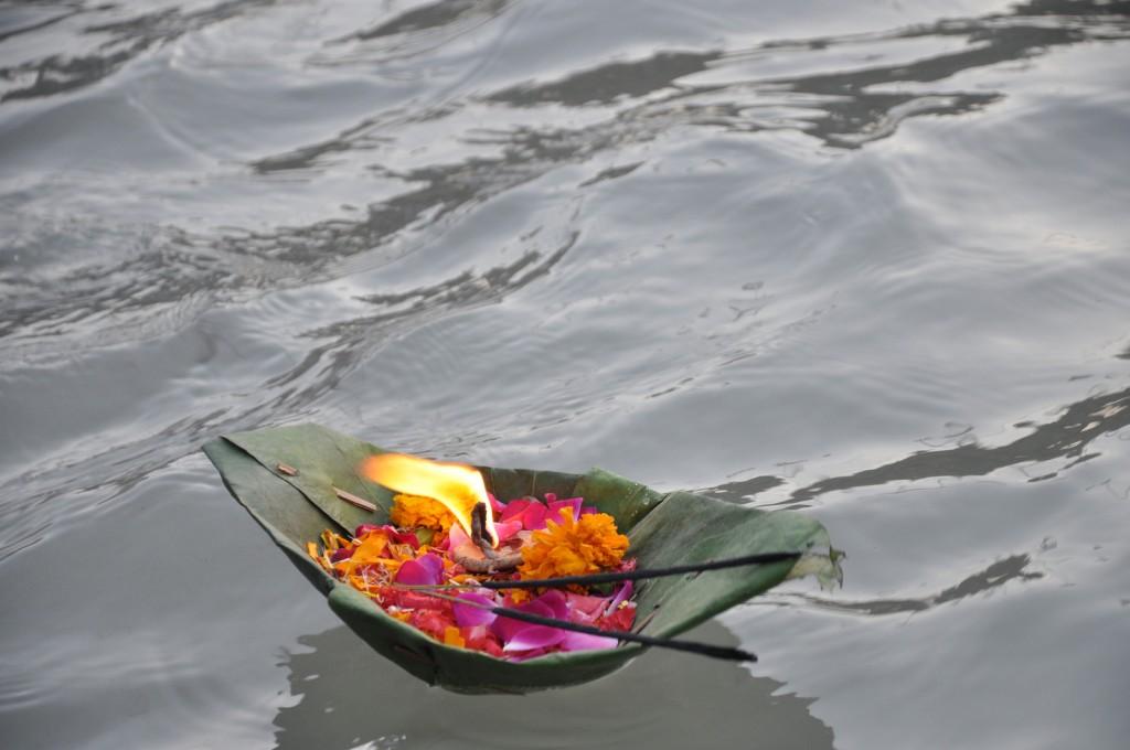 Ganga flower