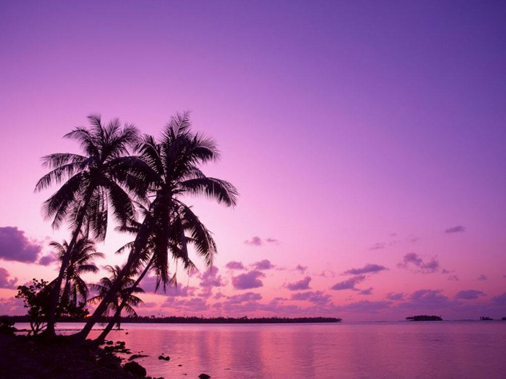 purple-sunset-on-the-beach-9101-hd-wallpapers